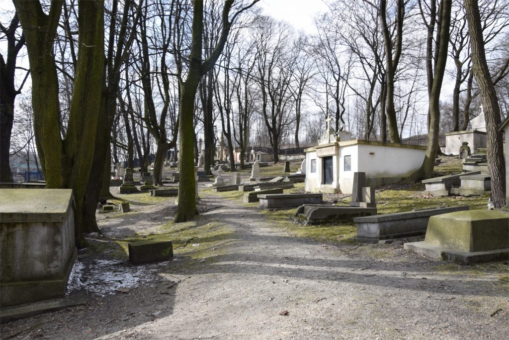 Widok na stary Cmentarz Podgórski