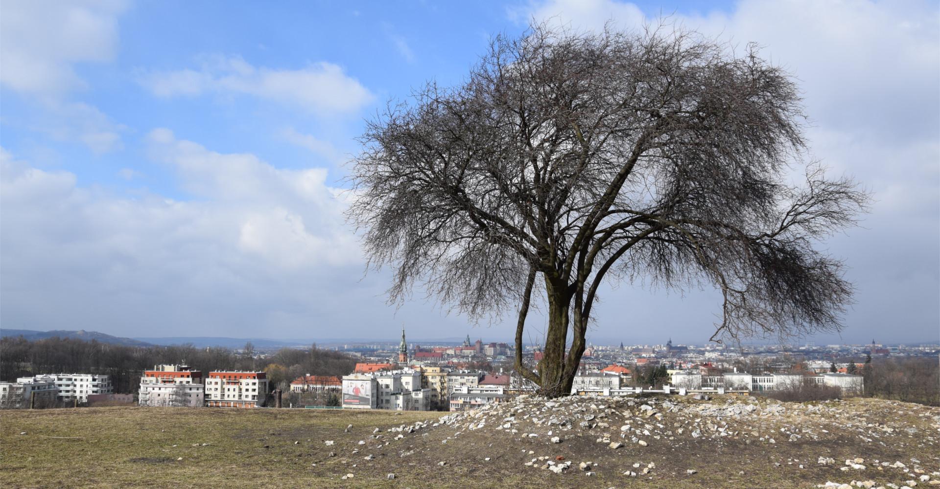 Widok na Kraków z kopca Krakusa