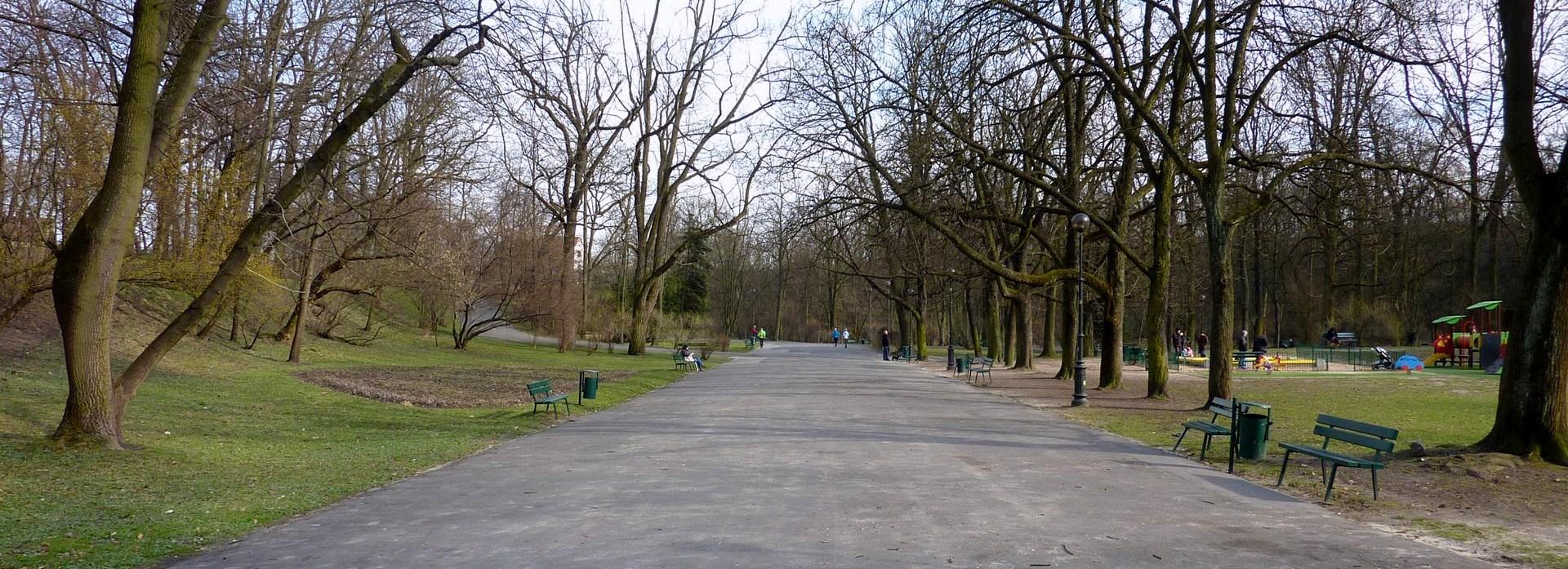 Kwietnik w Parku Bednarskiego