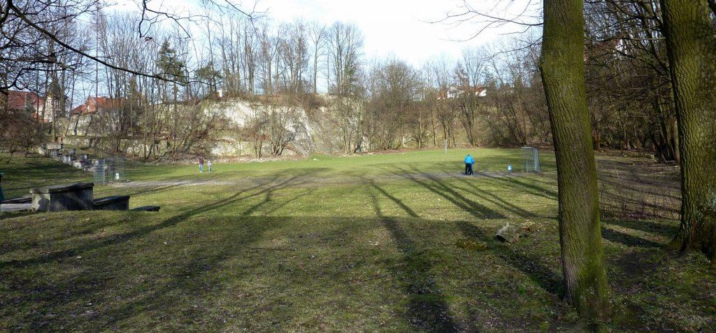 Park Ludowy w Parku Bednarskiego