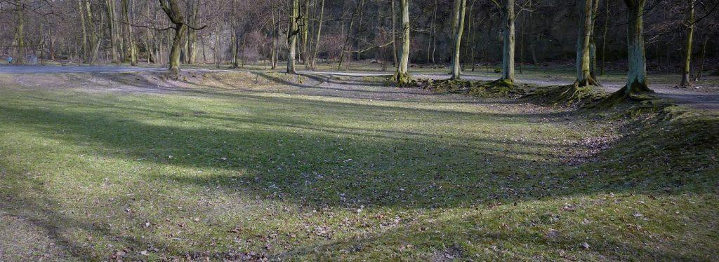 Fragment wgłębnika w Parku Bednarskiego